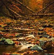 Wild Valley Art Print