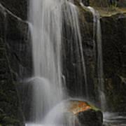 Wildcat Falls Yosemite National Park Art Print