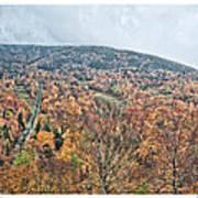 Wildcat Mountain Gold Art Print