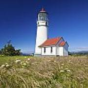 Wildflowers And Cape Blanco Lighthouse Art Print