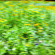 Wildflowers And Wind 2 Art Print by Skip Nall