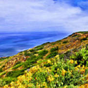 Wildflowers At Point Loma Art Print