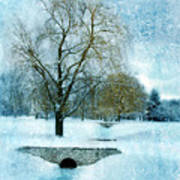 Willow Trees By Stream In Winter Art Print