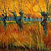 Willows At Sunset Art Print