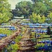 Wimberley's Bluebonnets Art Print