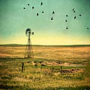 Windmill And Birds Art Print