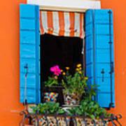 Window Plants Art Print