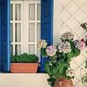 Window With Flowers Art Print