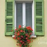 Window With Shutter Flowers Art Print