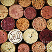 Wine Corks Art Print by Elena Elisseeva