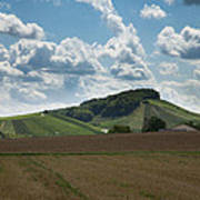 Wine Hills Of Germany Art Print
