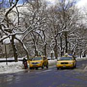 Winter - 2011 Art Print