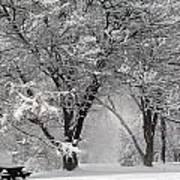Winter 0002 Art Print