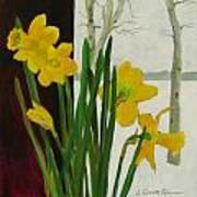 Winter Daffodils Art Print
