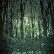 Winter Forest At Twilight Art Print