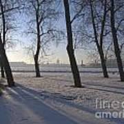 winter forest Peterburg Art Print