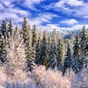 Winter In The Rockies Art Print