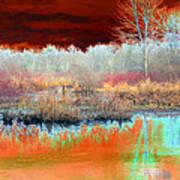 Winter Marsh Art Print