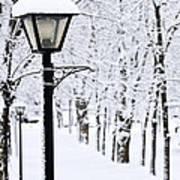 Winter Park Art Print by Elena Elisseeva