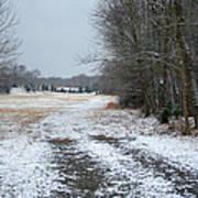 Winter Pasture Art Print