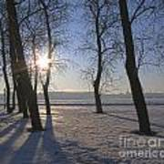 winter Peterburg Russia  Art Print