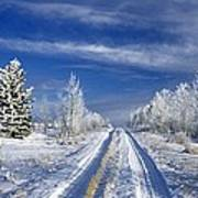 Winter Rural Road Art Print