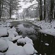 Winter Scene Of Creek With Snow-covered Art Print