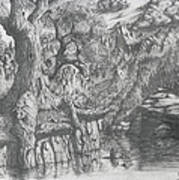 Wise Old Tree Art Print