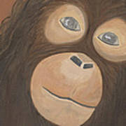 Wistful Chimpanzee Art Print