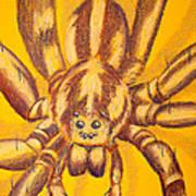 Wolf Spider Art Print by Thomas Maynard
