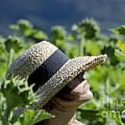 Woman With Straw Hat Art Print