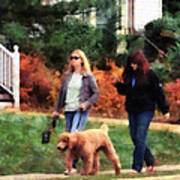 Women Walking A Dog Art Print