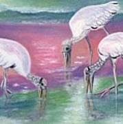 Wood Stork Family At Sunset Art Print