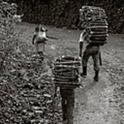 Woodcarriers In Guatemala Art Print