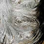 Wooden Fingerprint Eddies In The Grain Of An Old Log Like Whorls On A Finger Art Print