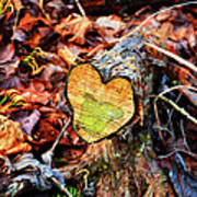 Wooden Heart Art Print