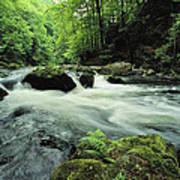 Woodland Stream And Rapids, Time Art Print