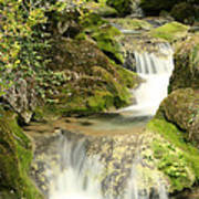 Woodland Waterfall Art Print by Victoria Hillman