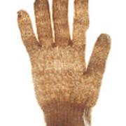 Woolen Glove Art Print by Bernard Jaubert