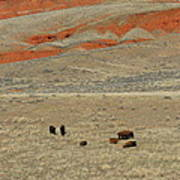 Wyoming Red Cliffs And Buffalo Art Print