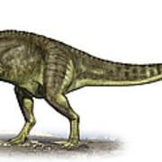 Yangchuanosaurus Shangiouensis Art Print