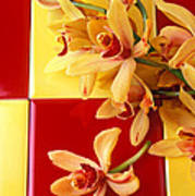 Yellow And Red Orchids  Art Print