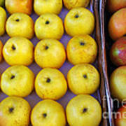 Yellow Apples Art Print