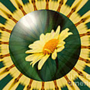 Yellow Daisy Energy Art Print