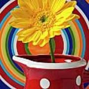 Yellow Daisy In Red Pitcher Art Print