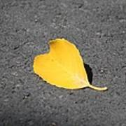 Yellow Heart Art Print