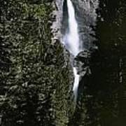 Yosemite Falls, Yosemite National Park Art Print