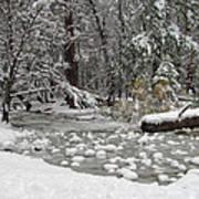 Yosemite Winter Art Print by Heidi Smith