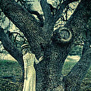 Young Lady In White By Tree Art Print