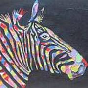 Zebra Art Print by Rejeena Niaz
